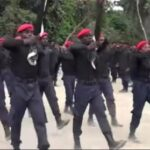 Video: IPOB/ESN fighters enforce ban on open grazing in Delta, shoot cows on sight