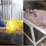 10 die as suspected 'back-to-sender charm' turns poison in Kwara