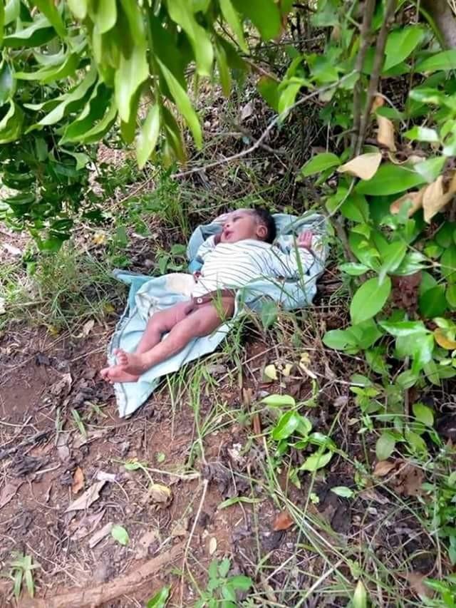 Photos: Beautiful baby boy found dumped in bush in Kenya
