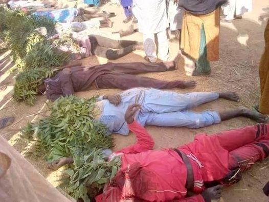 Update: Photos of people slaughtered by gunmen in Zamfara State