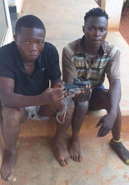 Operation Puff Adder: Police arrest notorious armed robbers that specialize in snatching handbags at Upper Iweka, Onitsha (photo)