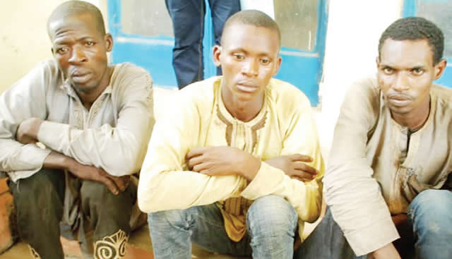 Police arrest Three Armed Robbers In Niger