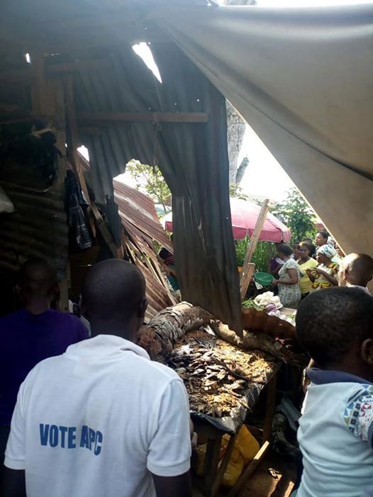 Photos: Trader, customer escape death by inches as huge branch breaks off ancient tree and crushes stall at market square in Umuahia