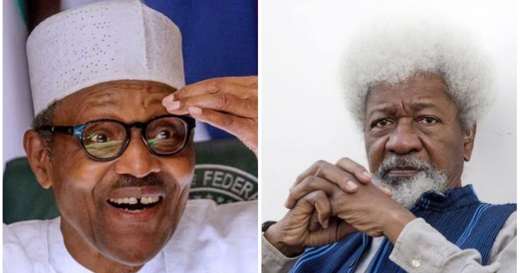 COVID-19: Presidency mocks Soyinka over comments on lockdown, says he is fiction writer not medical professor