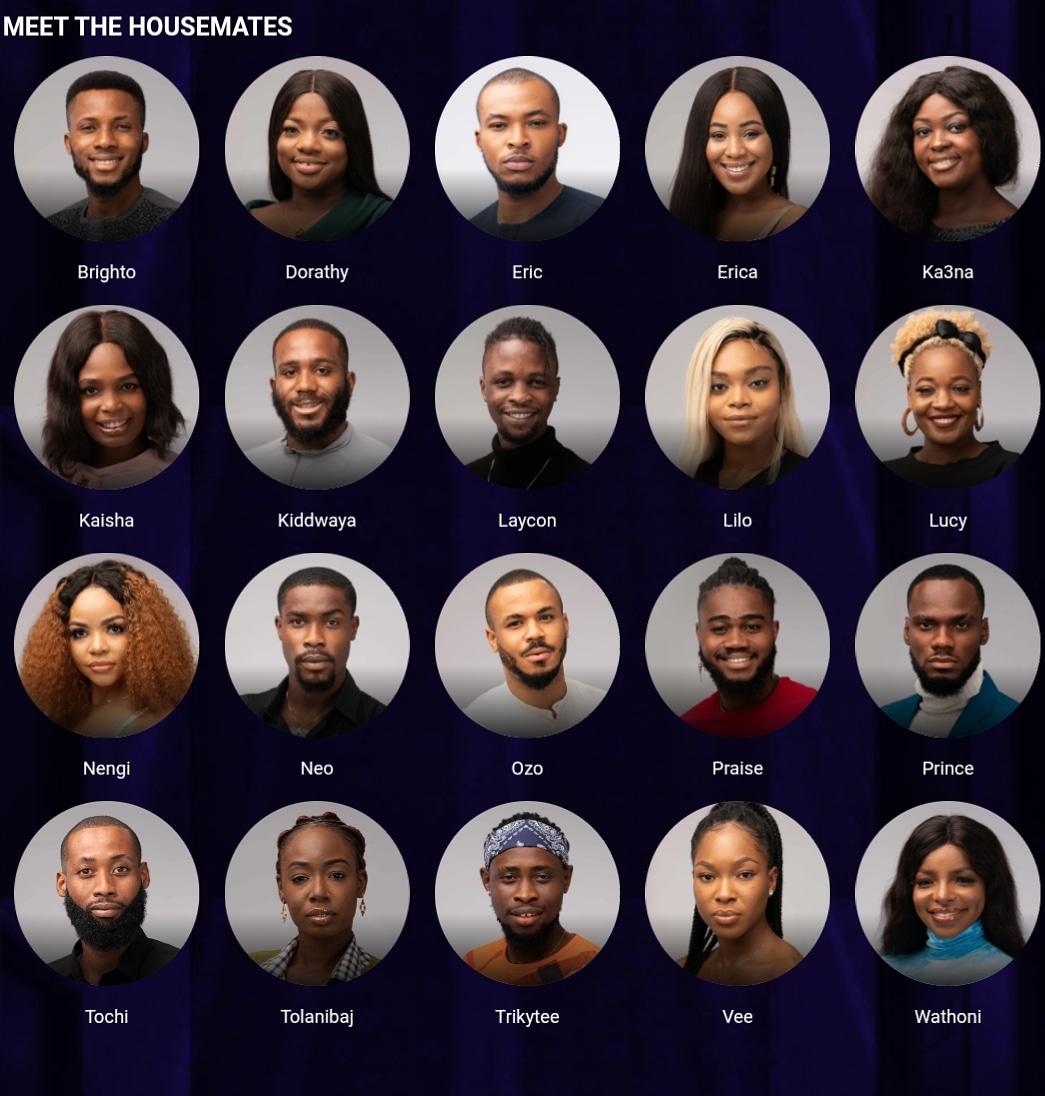BBNaija 2020 Housemates Unveiled: Meet all 20 of them