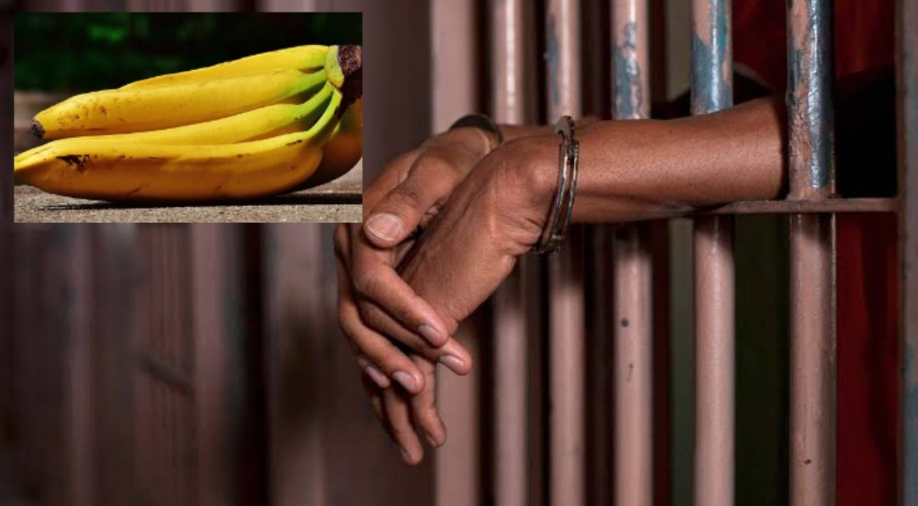Osun man sentenced to a month in jail for stealing plantain