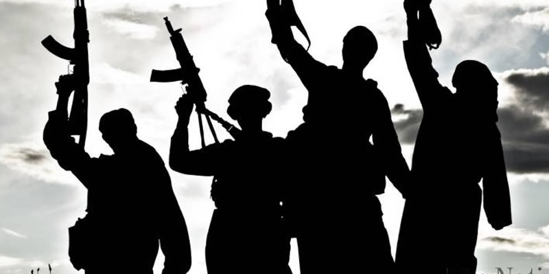 Nigeria's counter-terrorism campaign and the role of its citizens in diaspora
