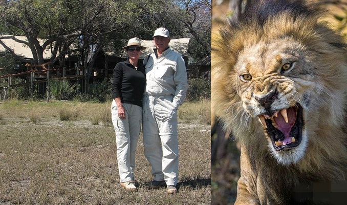 Tourist had part of his arm ripped off by a lion
