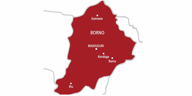Parts of Borno State more peaceful than Rome - Human rights activist, Ikpa