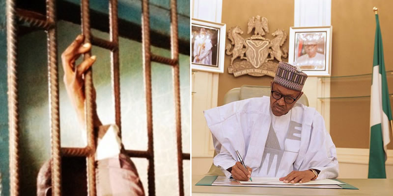 """Nigerians should worry for themselves"", Lawyer laments after discovering prison cell in presidential villa"