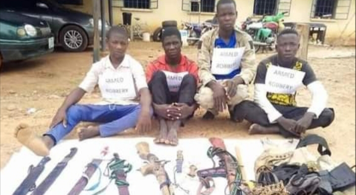 PHOTOS: Police arrest seven-man gang of dare-devil robbers for terrorising Adamawa communities
