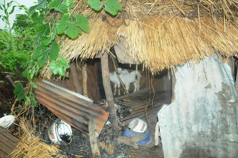 Photos: Troops storm Boko Haram hideout in Borno, rescue 21 civilians